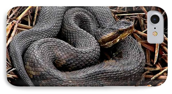 Water Moccasin IPhone Case
