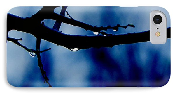 Water On Branch IPhone Case by Craig Walters