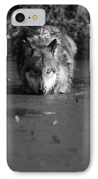 IPhone Case featuring the photograph Water Wolf I by Shari Jardina