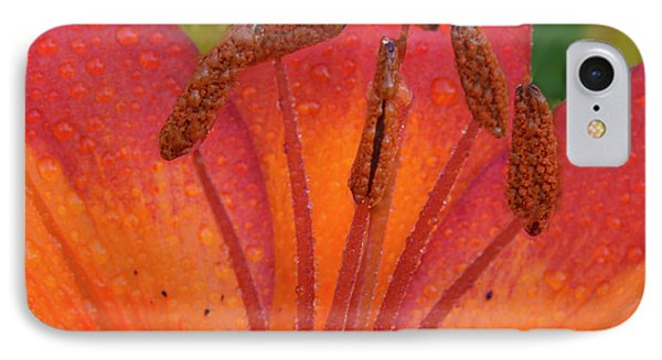 IPhone Case featuring the photograph Watered Lily by Jean Noren