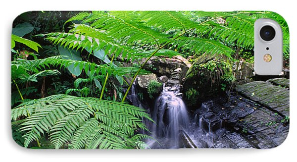 Waterfall And Tree Fern Phone Case by Thomas R Fletcher