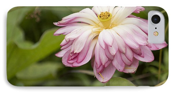 Waterlily Phasing Out Phone Case by Linda Geiger