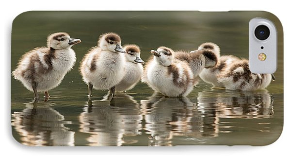 We Are Family - Seven Egytean Goslings In A Row IPhone Case by Roeselien Raimond