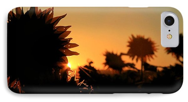 IPhone Case featuring the photograph We Are Sunflowers by Chris Berry