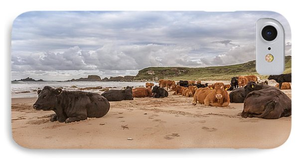 We Moo Like To Be Beside The Seaside IPhone Case by Roy McPeak
