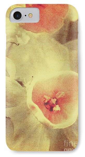Weathered And Faded Daffodils IPhone Case by Jorgo Photography - Wall Art Gallery