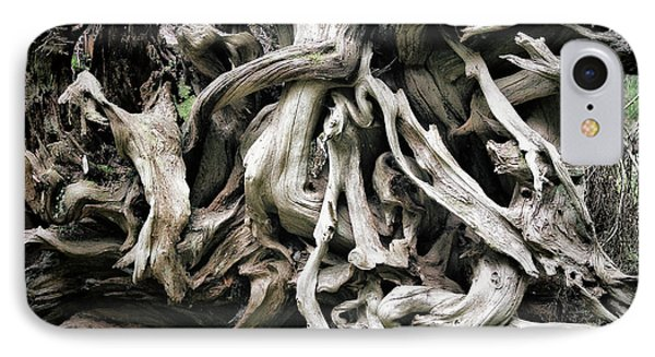 Weathered Roots - Sitka Spruce Tree Hoh Rain Forest Olympic National Park Wa Phone Case by Christine Till
