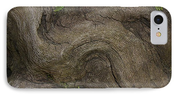 Weathered Tree Root IPhone Case