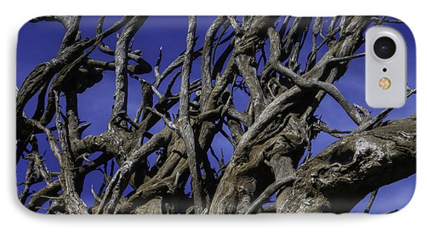 Weathered Tree Roots IPhone Case by Garry Gay