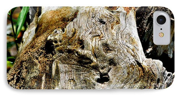 Weathered Wood IPhone Case by Debbie Portwood