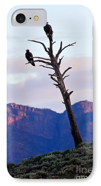 IPhone Case featuring the photograph Wedge Tail Eagles by Bill  Robinson