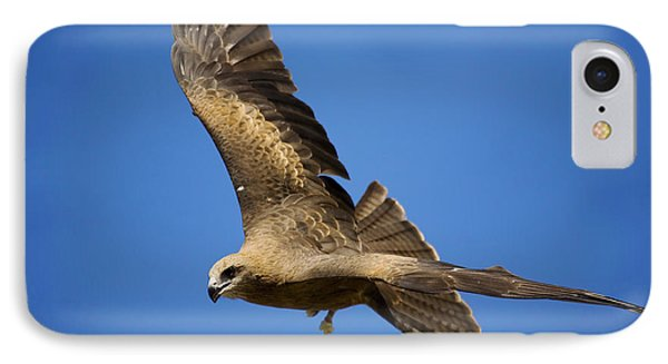 Wedgetail Eagle Flight Phone Case by Mike  Dawson