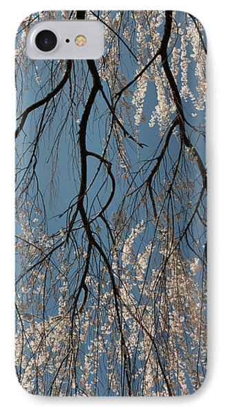 Weeping Cherry #2 IPhone Case by Dana Sohr