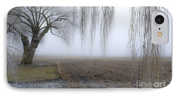 Weeping Frozen Willow IPhone Case by Amy Fearn