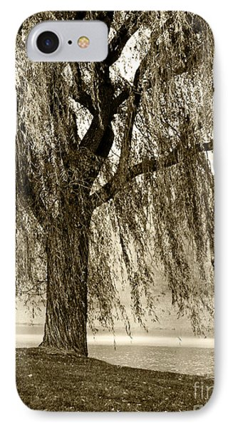 Weeping Willow Mist IPhone Case by Carol F Austin