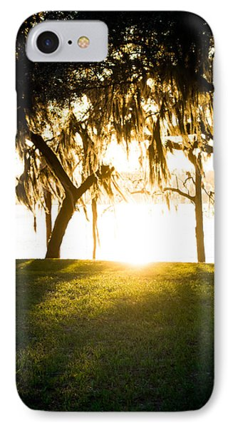 Spanish Moss At Sunset IPhone Case by Shelby Young