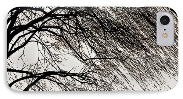 Weeping Willow Tree  IPhone Case by Carol F Austin