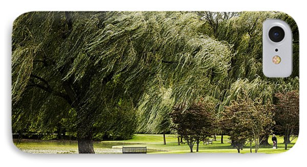 Weeping Willow Trees On Windy Day IPhone Case by Carol F Austin