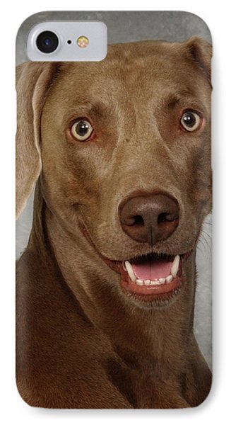 IPhone Case featuring the photograph Weimaraner by Greg Mimbs