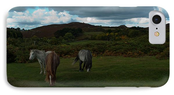 IPhone Case featuring the photograph Welsh Mountain Pony's  by Lynn Hughes