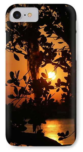 IPhone Case featuring the photograph West Palm Beach Sunrise by Diane Merkle
