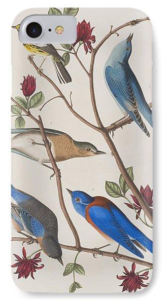 Bluebird iPhone 7 Case - Western Blue-bird by John James Audubon