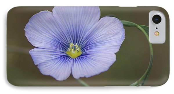 IPhone Case featuring the photograph Western Blue Flax by Ben Upham III
