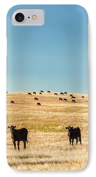 Western Herd Of Cattle IPhone Case by Todd Klassy