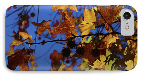 Western Sycamore Color Changing IPhone Case by Ernie Echols