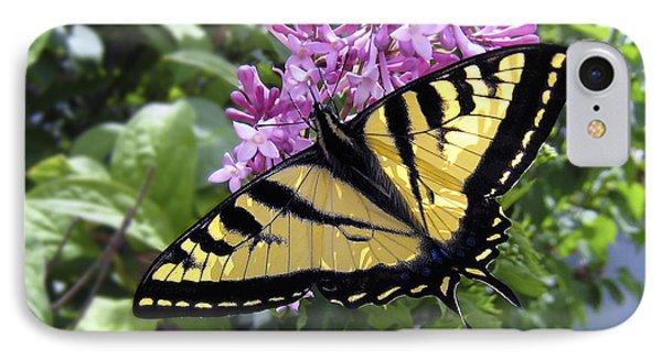 Western Tiger Swallowtail Butterfly Phone Case by Daniel Hagerman