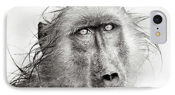 Wet Baboon Portrait IPhone Case by Johan Swanepoel