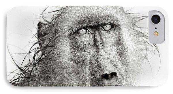 Wet Baboon Portrait IPhone Case by Johan Swanepoel