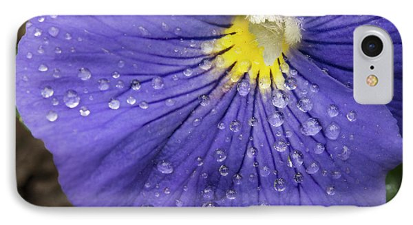 IPhone Case featuring the photograph Wet Pansy by Jean Noren