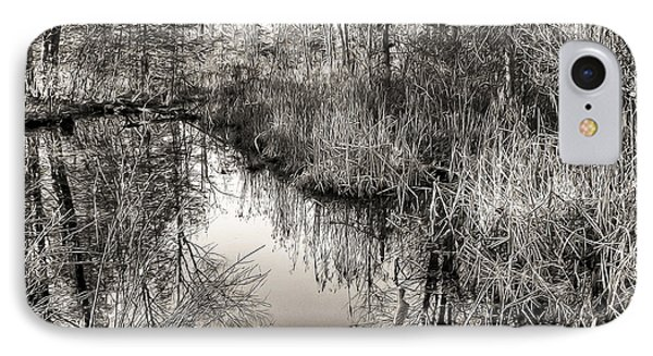 IPhone Case featuring the photograph Wetland Essence by Betsy Zimmerli