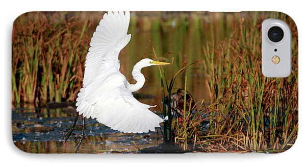 Wetland Landing IPhone Case by Ray Congrove