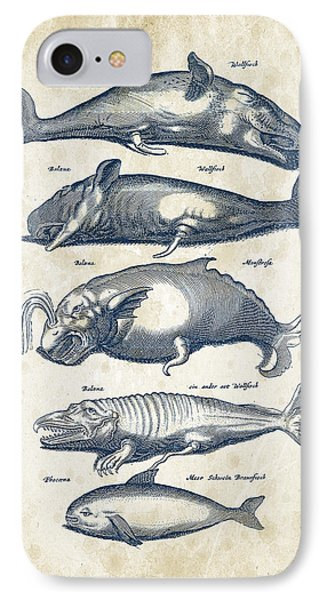Whale Historiae Naturalis 08 - 1657 - 41 IPhone Case by Aged Pixel