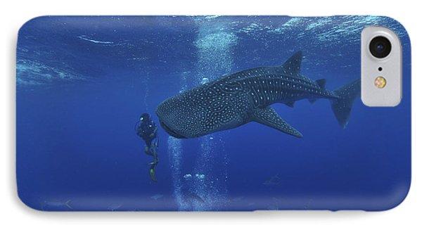 Whale Shark And Diver, Maldives Phone Case by Mathieu Meur