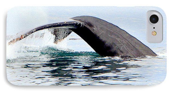 Whale Watch Moss Landing Series 24 IPhone Case by Antonia Citrino