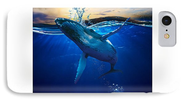 Whale Watching Art IPhone Case