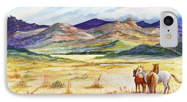 IPhone Case featuring the painting What Lies Beyond by Marilyn Smith