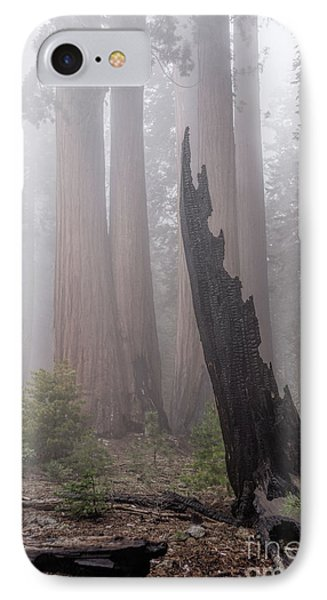 IPhone Case featuring the photograph What Lurks In The Forest by Peggy Hughes