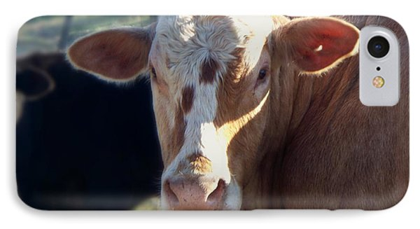 IPhone Case featuring the photograph What You Lookin' At by Betty Northcutt