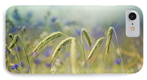 Wheat And Corn Flowers IPhone Case by Nailia Schwarz