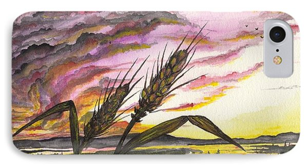 Wheat Field IPhone Case by Darren Cannell