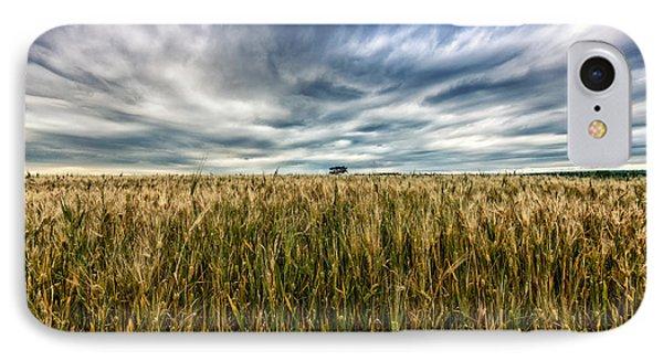 Wheat Field IPhone Case by Stelios Kleanthous
