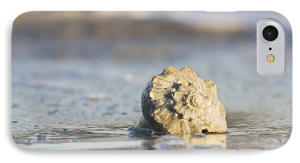 Whelk Shell In Surf IPhone Case by Bob Decker