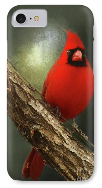 IPhone Case featuring the photograph When Angels Are Near by Darren Fisher