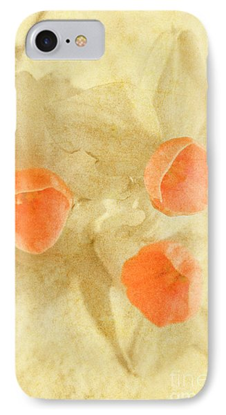 When Beauty Fades IPhone Case