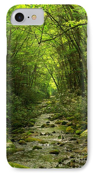 Where It Leads Phone Case by Southern Photo
