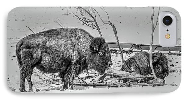 Where The Buffalo Rest IPhone Case